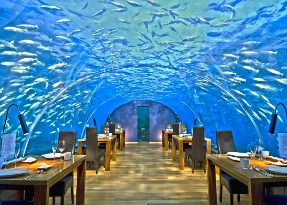 498255-ithaa-undersea-restaurant-1000-ab093a3947-1475746435